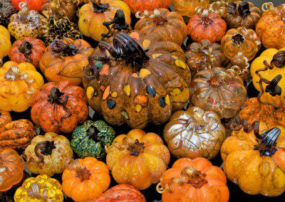 Stunning displays of glass pumpkins